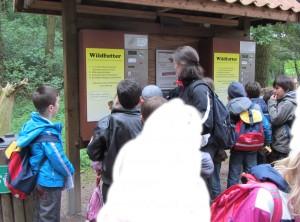 Wildpark_8_bearb